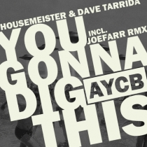 DIG THIS by HOUSEMEISTER & DAVE TARRIDA